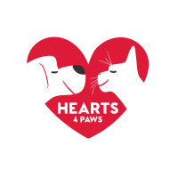Hearts4Paws Homepage jetzt online